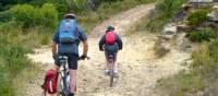 Blue Mountains Australia Mountain Cycling | DL