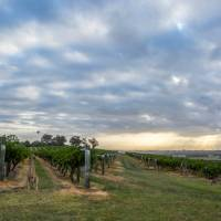 Hang out with the locals at Hermitage Road Cellars | Destination NSW