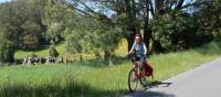 Cycling past fields with cows grazing in the Southern Highlands | Kate Baker