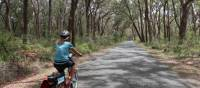 Cycling the quiet route to Robertson | Kate Baker