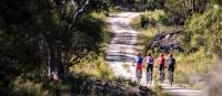 Explore one of the many cycle trails of the Blue Mountains | Sam Carr