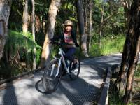 Family cycling in northern NSW |  <i>Brad Atwal</i>