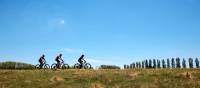 The NSW countryside offers superb cycling experiences | Destination NSW