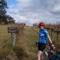 In the vines in Mudgee | Ross Baker