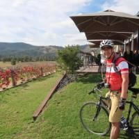 Moothi Estate Vineyard in Mudgee | Ross Baker
