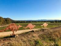 Discover fine wines, local produce and magnificent scenery on one of our self guided cycles around Mudgee |  <i>Sue Badyari</i>