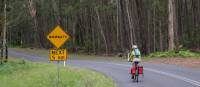 Myrtle Mountain Wombat sign with Cyclist   Ross Baker