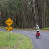 Myrtle Mountain Wombat sign with Cyclist | Ross Baker