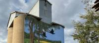 Painted Silos are a feature of the CWC   Michele Eckersley