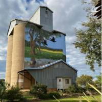 Painted Silos are a feature of the CWC | Michele Eckersley