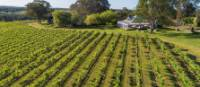 Our deluxe accommodation in the Hunter Valley | Spicers