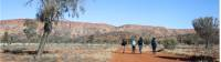 Walking in the Central Australian desert on the Larapinta Trail |  <i>#cathyfinchphotography</i>
