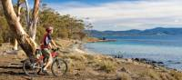 Cycling on Maria Island | Andrew Bain