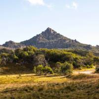 Cycle up Mount Buffalo, a nice challenge off the main Murray to Mountains Rail Trail | Josie Withers