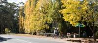 Pedal towards fine produce in rural Victoria   Emily Godfrey
