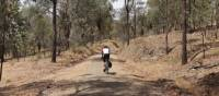 A cyclist on the Murray to the Mountains bike path | Bruce Baker