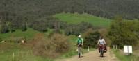 Cycling the Murray to Mountains Rail Trail near Eurobin | Rail Trails Australia