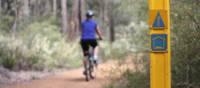Cycling along the Munda Biddi Trail from Albany to Walpole
